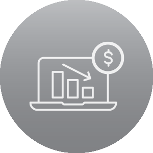 Minimum Payment Icon